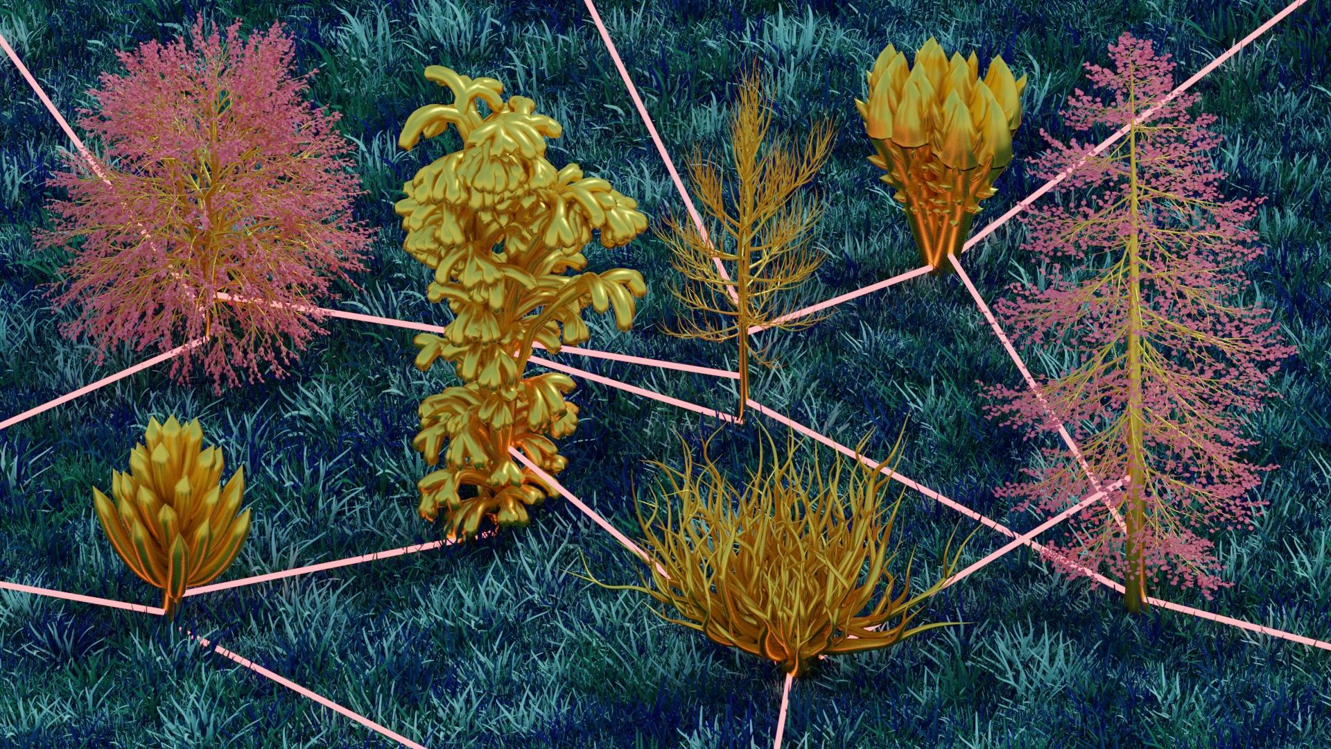connexion_arbre_prairie