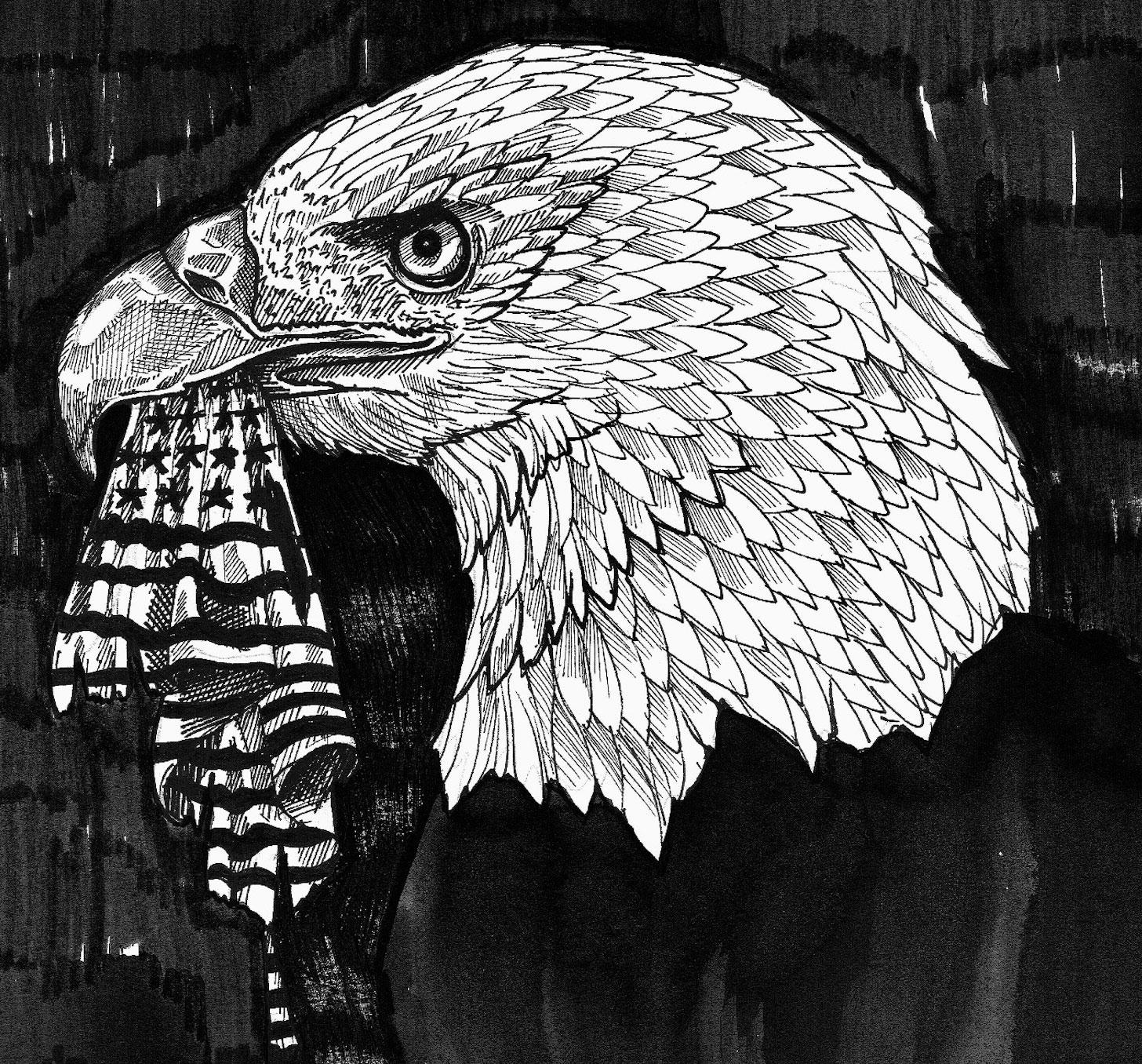 Illustrations d'Ophélie Belly Courbis sur les raisons du vote Trump, un an après son élection